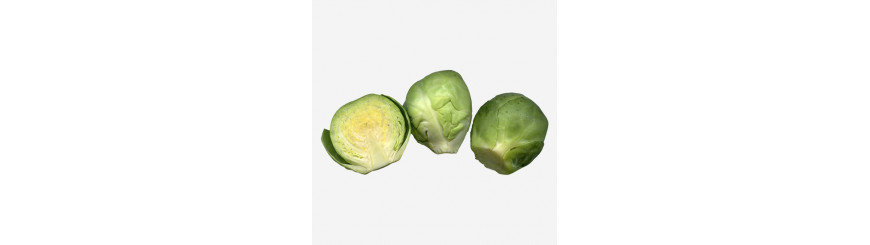 Cut Vegetables & Sprouts